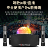 Karaoke Player Outdoor Speaker With Microphone And Light